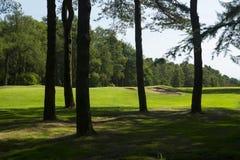 Drapeau de golf par des arbres Photo stock