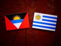 Drapeau de l'Antigua-et-Barbuda avec le drapeau d'Uruguaian sur une OIN de tronçon d'arbre Images libres de droits