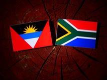 Drapeau de l'Antigua-et-Barbuda avec le drapeau sud-africain sur un tronçon d'arbre Photographie stock libre de droits