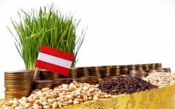 Drapeau de l'Autriche ondulant avec la pile de pièces de monnaie d'argent et les piles des graines image libre de droits