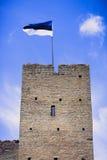 Drapeau de l'Estonie sur une tour Photos stock