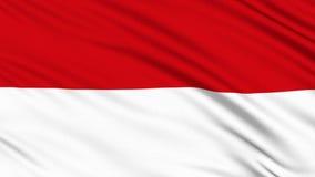 Drapeau De L Indonésie drapeau de l indonésie métrage – 162 drapeau de l indonésie clips
