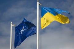 Drapeau de l'Ukraine et du drapeau de l'OTAN image libre de droits