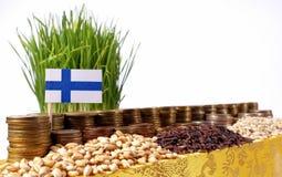 Drapeau de la Finlande ondulant avec la pile de pièces de monnaie d'argent et les piles du blé photo stock