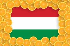 Drapeau de la Hongrie dans le cadre frais de tranches d'agrumes photo stock