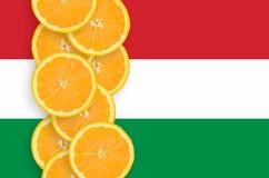 Drapeau de la Hongrie et rangée verticale de tranches d'agrumes photographie stock libre de droits