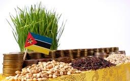 Drapeau de la Mozambique ondulant avec la pile de pièces de monnaie d'argent et les piles du blé Image stock
