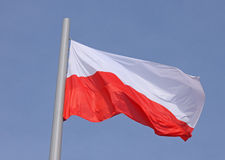 Drapeau de la Pologne Photo stock