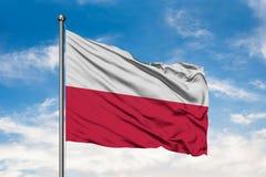 Drapeau de la Pologne ondulant dans le vent contre le ciel bleu nuageux blanc Indicateur polonais photographie stock libre de droits