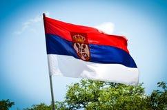 Drapeau de la Serbie au soleil Photos libres de droits