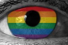 Drapeau de Lgbt dans l'oeil images libres de droits