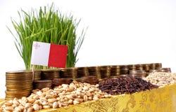 Drapeau de Malte ondulant avec la pile de pièces de monnaie d'argent et les piles du blé Images libres de droits