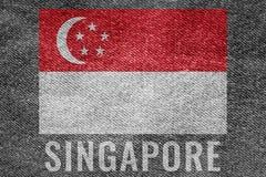 Drapeau de nation de SINGAPOUR sur la conception de texture de treillis Image libre de droits