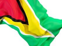 Drapeau de ondulation de la Guyane illustration stock