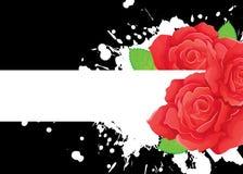 Drapeau de roses sur le noir Photographie stock