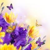 Drapeau des fleurs Background illustration stock