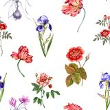 Drapeau des fleurs Background Configuration sans joint Image stock