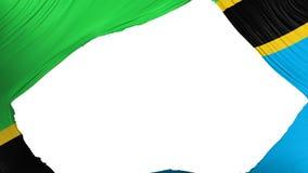 Drapeau divisé de la Tanzanie photographie stock libre de droits