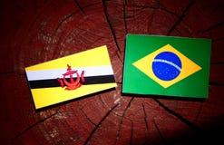 Drapeau du Brunei avec le drapeau brésilien sur un tronçon d'arbre d'isolement photos libres de droits