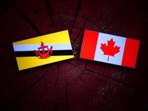 Drapeau du Brunei avec le drapeau canadien sur un tronçon d'arbre d'isolement photographie stock