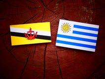 Drapeau du Brunei avec le drapeau d'Uruguaian sur un tronçon d'arbre d'isolement photo libre de droits