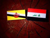 Drapeau du Brunei avec le drapeau irakien sur un tronçon d'arbre d'isolement images libres de droits