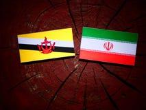 Drapeau du Brunei avec le drapeau iranien sur un tronçon d'arbre d'isolement photo stock
