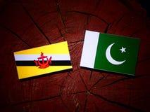 Drapeau du Brunei avec le drapeau du Pakistan sur un tronçon d'arbre d'isolement photo libre de droits