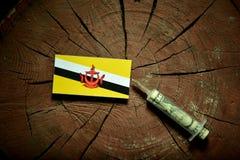 Drapeau du Brunei sur un tronçon avec la seringue injectant l'argent images stock