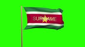 Drapeau du Surinam avec le titre ondulant dans le vent banque de vidéos