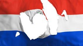 Drapeau en lambeaux du Paraguay illustration de vecteur