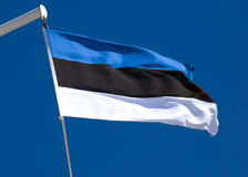 Drapeau estonien Photographie stock