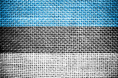 Drapeau estonien. Photographie stock