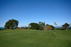 Drapeau et trou sur un terrain de golf Images stock