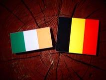 Drapeau irlandais avec le drapeau belge sur un tronçon d'arbre d'isolement images stock