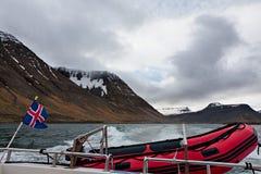 Drapeau islandais et navigation de canot en caoutchouc dans un fjord, Islande Images libres de droits