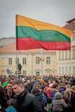 Drapeau lithuanien Images libres de droits