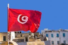 Drapeau national de la Tunisie photographie stock libre de droits
