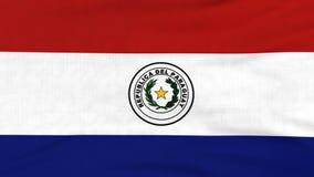 Drapeau national du vol du Paraguay sur le vent clips vidéos