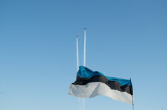 Drapeau national estonien Photo stock