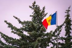 Drapeau roumain sur le drapeau de la Roumanie de mât de la soie Drapeau roumain sur le mât de drapeau soufflant en vent d'isoleme image stock