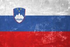 Drapeau slovène image stock