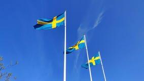 Drapeau suédois ondulant sous le ciel bleu clair dans les mâts de drapeau pendant la célébration de jour national banque de vidéos