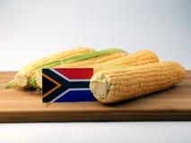Drapeau sud-africain sur un panneau en bois avec du maïs d'isolement sur un whi photos libres de droits