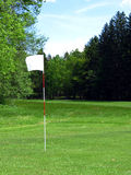 Drapeau sur le champ de golf Photo libre de droits
