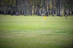Drapeau sur une pelouse manicured Image libre de droits