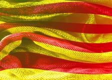 Drapeau texturisé grunge de la Catalogne Image stock