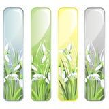 Drapeau vertical avec des fleurs de source Images stock