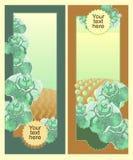 Drapeau vertical Chou et champs de chou Ferme avant et après la moisson Photo stock