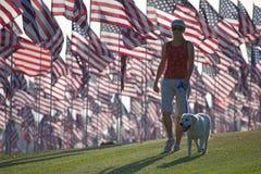 3000 drapeaux Photos libres de droits